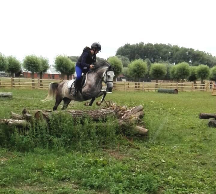 [2022] Paardrijden dressuur of eventing - Pasen - Merelbeke